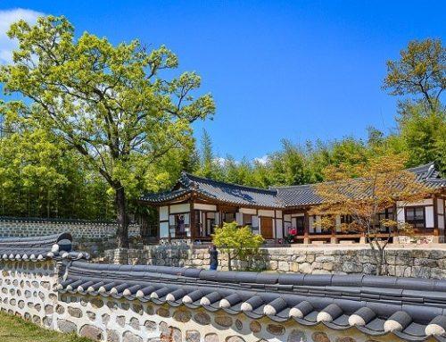 Những Lưu Ý Đi Du Lịch Mùa Đông Ở Hàn Quốc